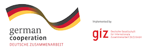 GIZ new logo