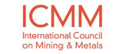 ICMM - website